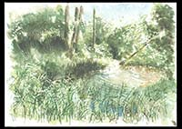Middle Colony Creek, watercolor on paper, 9in by 13in, 2008